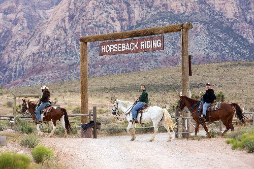 Image result for cowboy trail rides