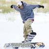 skiresort_t