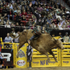 NFR Seth Glause 120111_t