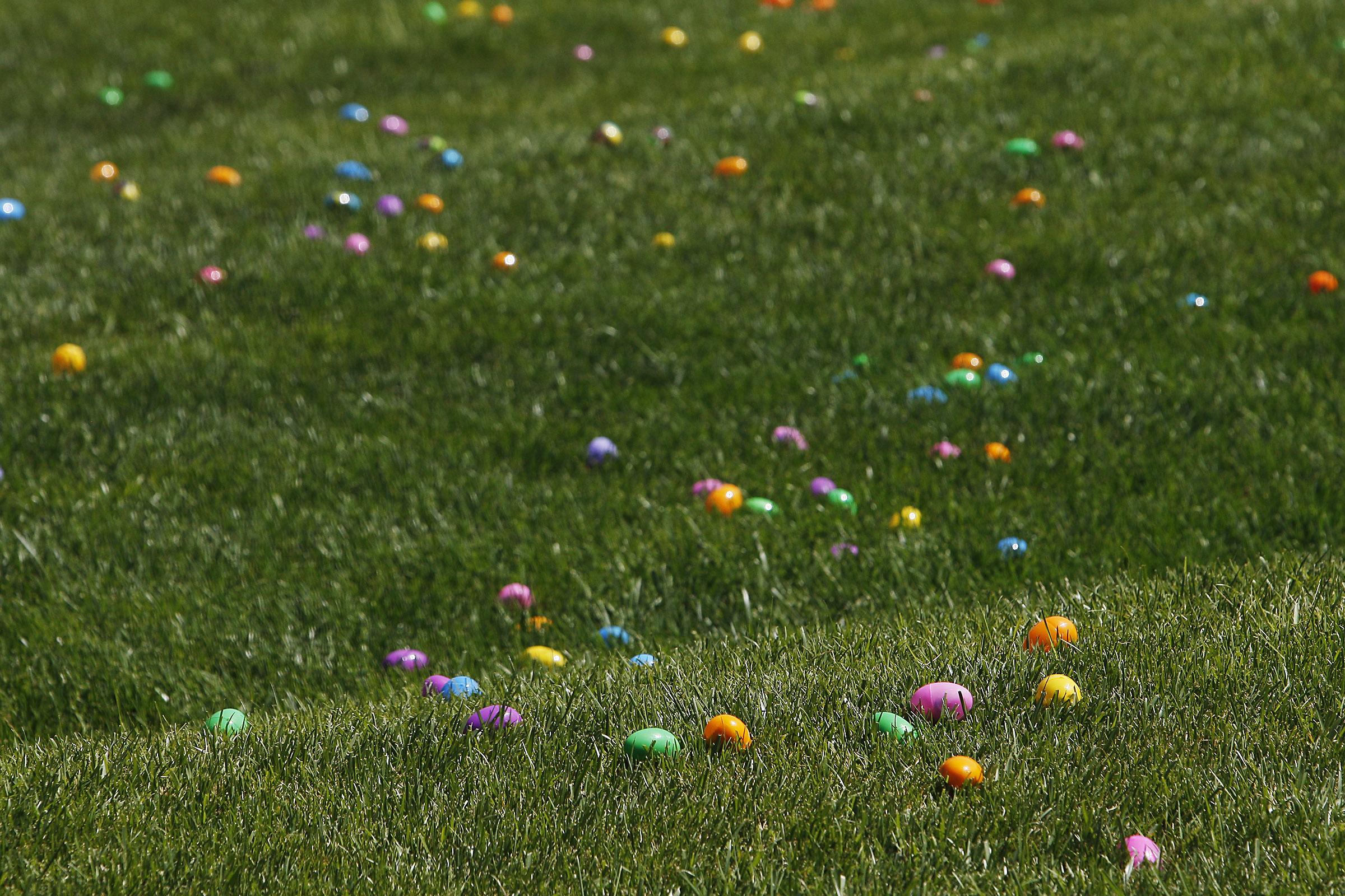 egg hunt02