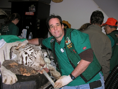 How to Find an Exotic Animal Vet
