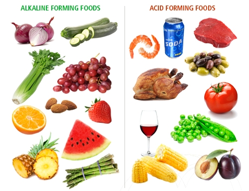 is a alkaline diet good for you