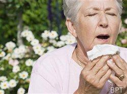 Frequent spring allergy questions answered