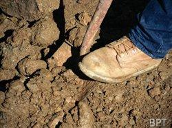 Digging soon? Call 811 first for safety's sake