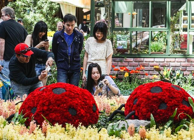 The spring display in the Conservatory & Botanical Gardens at the Bellagio hotel-casino features live butterflies and tulips among the flower displays. From left, Chien Wei Lan, Nien-Chih Tsai, Ch ...