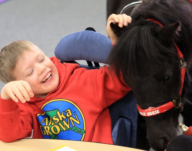 Zaiden Beattie, 4, pets his miniature service horse, Zoe, in his class at Russian Jack Elementary School on Wednesday in Anchorage, Alaska. Zaiden has been diagnosed with A-T, or ataxia-telangiect ...