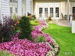 Help your landscape defeat the heat and thrive this season