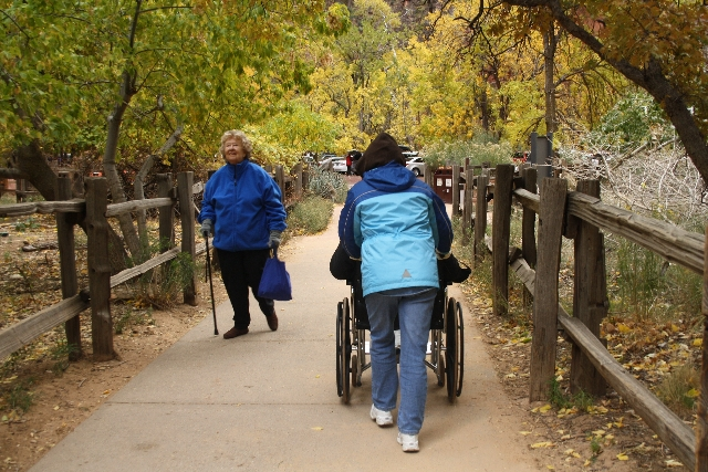 Visitors return from the two-mile paved Riverside Walk in Zion National Park, Utah. The trail starts at 4,400 feet in elevation and has a gradual 57-foot elevation change over two miles. The maxim ...
