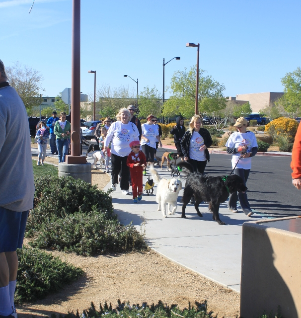 Las Vegas Valley Humane Society donors walk with their pets before a pooch contest March 24 at Centennial Hills Park, 7101 N. Buffalo Drive. The Las Vegas Valley Humane Society's 17th annual ...