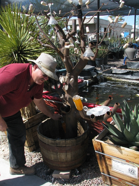 Dave Thompson demonstrates his bottle tree sculpture at Moon-Sun Cactus & Koi Gardens.