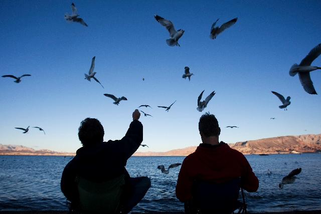 "John La Baum, left, feeds the birds with Kevin Waterman at the Lake Mead National Recreation Area on Dec. 13, 2009. The two make regular trips to the lake in the evening. ""It's just pe ..."