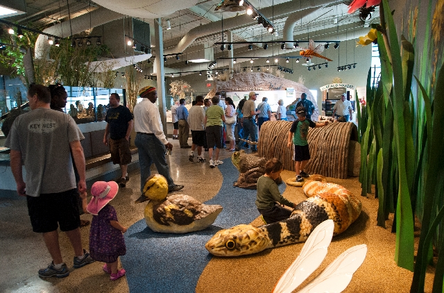 Visitors get a look at the new Nature Center exhibit gallery Saturday during the grand opening and dedication at Clark County Wetlands Park. The 45,000-square-foot complex also features an 85-seat ...
