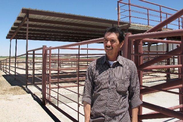 Valley Meat Co. owner Rick De Los Santos stands in a corral area outside the former cattle slaughterhouse he has converted to a horse slaughter facility in Roswell, N.M., on April 15. The plant -  ...
