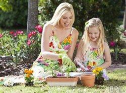 Simple ways to save water, money and your landscaping this summer