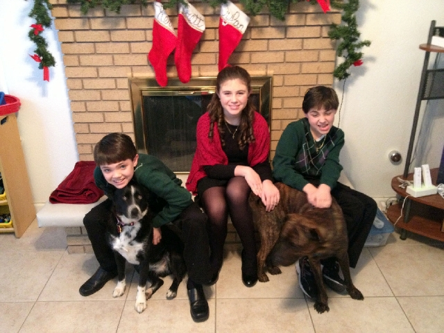 The Farley children, from left, Dylan, Kerri and Brett, sit in front of the hearth with their family pets for a Christmas 2012 picture. Their mother, Tracy, raised them by herself after her husban ...