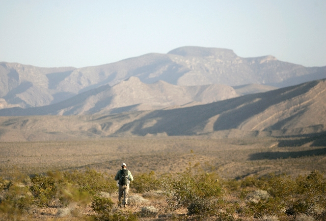 Ben Jurand walks to a designated GPS point to release a tortoise Wednesday. Researchers working out of the federal Desert Tortoise Conservation Center in Las Vegas released 32 tortoises as part of ...