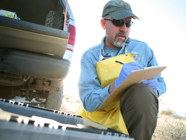 Roy Averill-Murray, U.S. Fish and Wildlife Service desert tortoise recovery coordinator, records notes on a tortoise prior to releasing it into the wild Wednesday. Researchers working out of the f ...