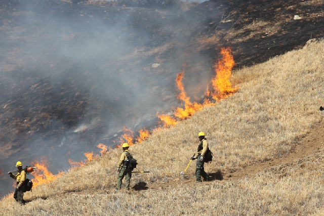 A U.S. Forest Service crew conduct a back burn to stop a wildfire burning on Wednesday in Banning, Calif.