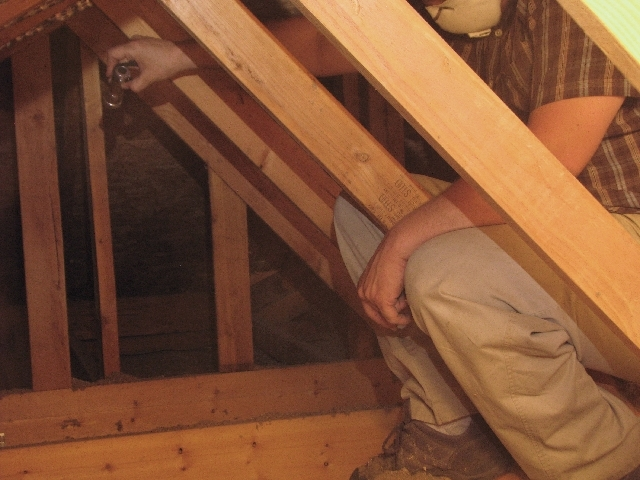 Dustin Terry of Innovative Energy Solutions Terry checks out an attic to see if a hot spot detected by the thermal imaging camera was caused by missing or poorly installed insulation.