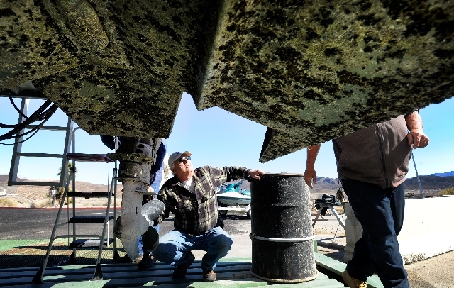 Ken Kotota of Las Vegas inspects the bottom side of a houseboat that is covered with quagga mussels at the Callville Bay Marina at the Lake Mead National Recreation Area on Wednesday, Feb. 13, 2013.