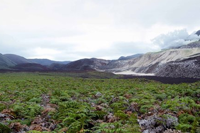 In this photo provided by Google, Daniel Orellana of the Charles Darwin Foundation is shown crossing a field of ferns to reach some naturally occurring sulfur mines on the top of Sierra Negra, an  ...