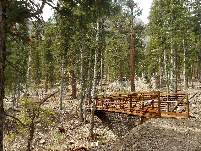 A new bridge spans a dry creek adjacent to the newly reopened Cathedral Rock Picnic Area on Mount Charleston.