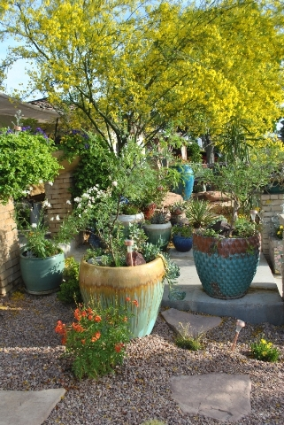 Picking the right plants can conserve more water than a lawn.
