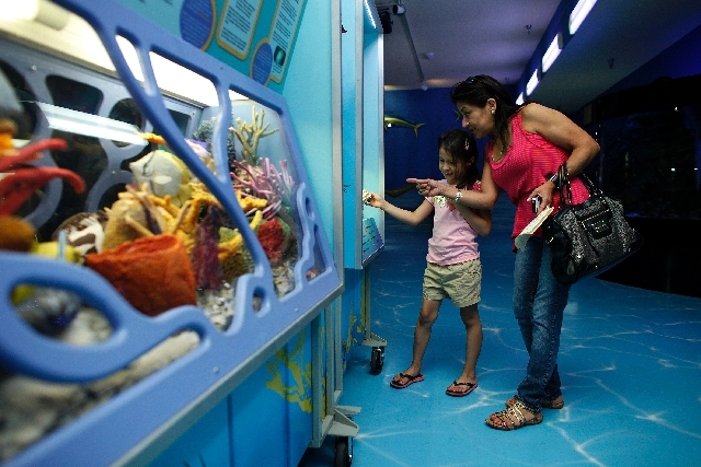 Yana Martinez, 7, and her grandmother Diana Martinez look at the Discovery Exhibit exhibit, part of the Sea Trek traveling exhibit, at the Las Vegas Natural History Museum in Las Vegas.