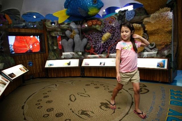 Yana Martinez, 7, walks through the Sanctuary Reef exhibit, part of the Sea Trek traveling exhibit, at the Las Vegas Natural History Museum in Las Vegas.