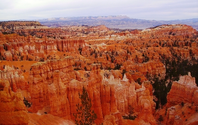Hoodoos formed by the park's freeze-and-thaw cycle are the geological stars at Bryce Canyon National Park in Utah.