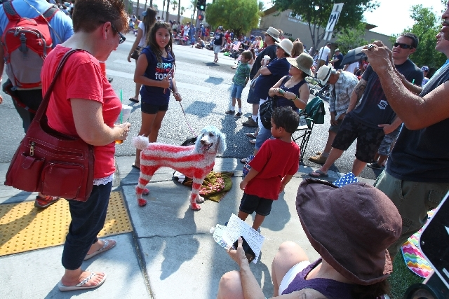 People watch Snowy, a poodle, during the 19th Annual Summerlin Council Patriotic Parade on Thursday.