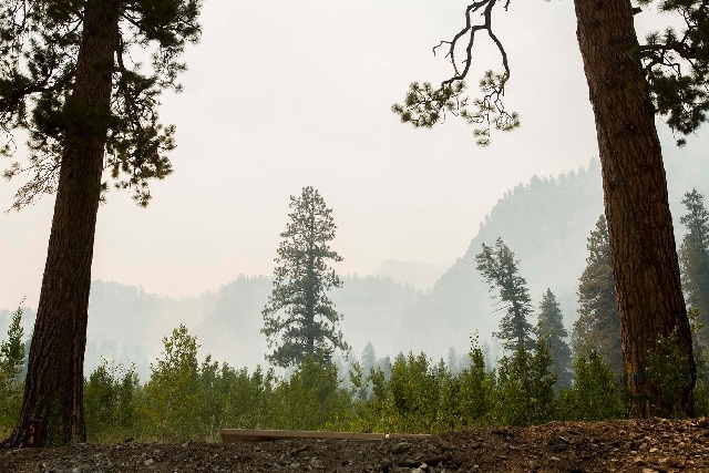 Smoke is seen Tuesday from the Carpenter 1 Fire at the Cathedral Rock picnic site in Mount Charleston. The lighting-caused fire, which started on July 1, has burned almost 28,000 acres.