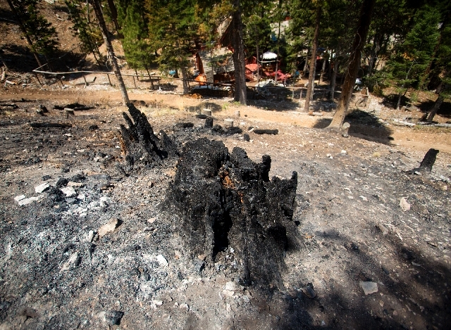 This burned-out stump, seen Friday, shows what happened near the Rainbow subdivision in Mount Charleston while the home below was saved. The lightning-caused Carpenter 1 Fire, which started July 1 ...