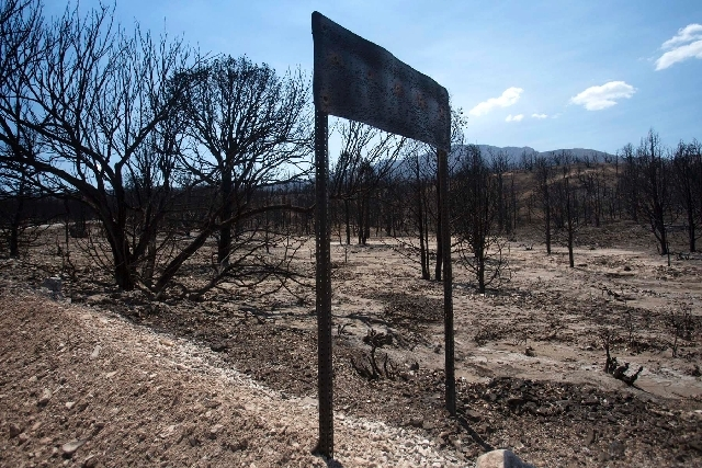 The burned out area of Harris Springs  about a mile south of  Kyle Canyon Road is seen Thursday, July 18, 2013. The  27,881-acre Carpenter 1 FIre is nearly contained. The area is scheduled to open ...
