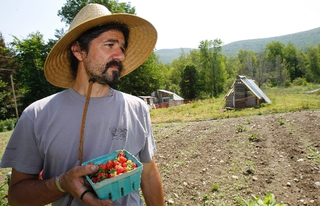 John Vitko holds freshly-picked strawberries in Warren, Vt. Vitko would like to grow hemp to feed his chickens.