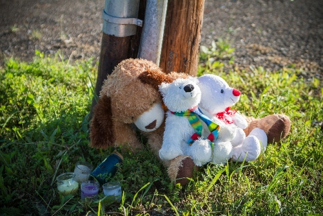 A memorial sits outside the Reptile Ocean exotic pet store in Campbellton, New Brunswick, Canada, on Tuesday. Two brothers, ages 5 and 7, were visiting the apartment of a friend above Reptile Ocea ...