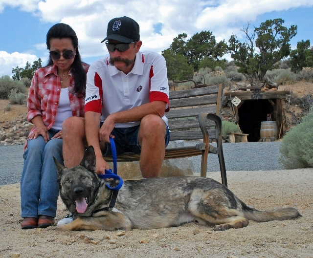 Bunnie and Ross Laflin sit with Asur, a former Marine explosives dog, July 24 at their Spanish Springs home. Asur was left blind because of acute glaucoma. The Laflins adopted him through their da ...