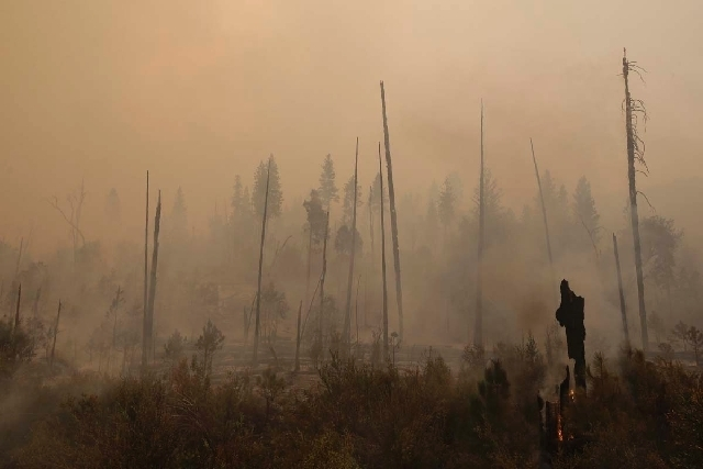 A smoke rises from smoldering trees as firefighters continue to battle the Rim Fire near Yosemite National Park, Calif., on Sunday. With winds gusting to 50 mph on Sierra mountain ridges and flame ...