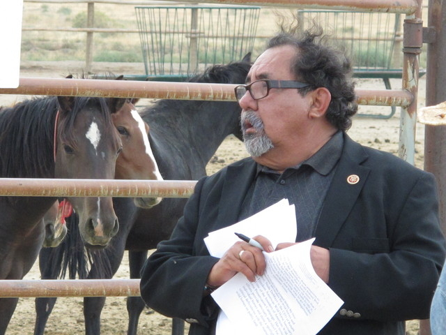 Rep. Raul Grijalva, D-Ariz., reviews his speech Wednesday before addressing reporters after touring a BLM corral holding more than 1,000 wild horses recently rounded up on federal land in Palomino ...