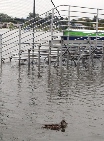 A duck swims near bleachers at Utah Park on Thursday, Sept. 12, 2013, in Aurora, Colo. The park was under water Thursday due to flooding. Flash flooding in Colorado has cut off access to towns, cl ...
