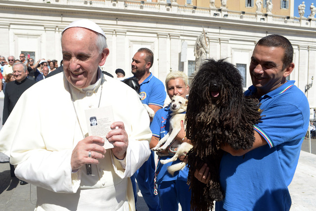 Pope Francis is shown a dog by a member of the Federazione Italiana Sport Cinofili (Italian Federation of Canine' Sports) after his weekly general audience at the Vatican on Wednesday. (AP Photo/L ...