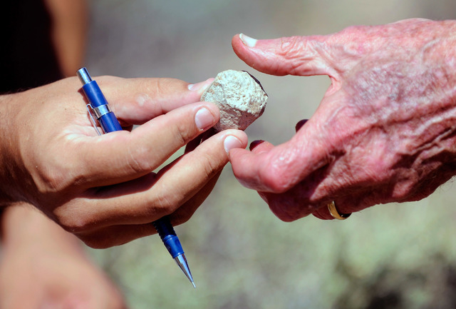 Josh Bonde, geology professor from UNLV hands off a fossil that was found at Spring Mountain Ranch State Park on Saturday, Sept. 14, 2013.  Bonde and several dozen students and volunteers surveyed ...