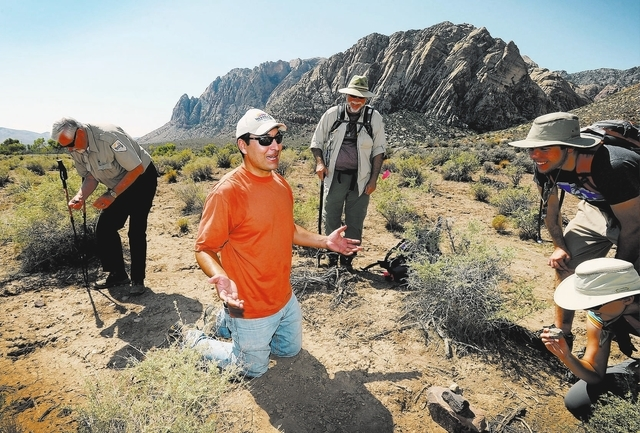 Josh Bonde, geology professor from UNLV talks with some his students after a fossil was found at Spring Mountain Ranch State Park on Saturday, Sept. 14, 2013. Bonde and several dozen students and  ...