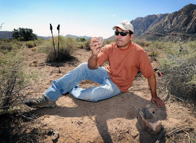 Josh Bonde, geology professor from UNLV examines a fossil that was found at Spring Mountain Ranch State Park on Saturday, Sept. 14, 2013.  Bonde and several dozen students and volunteers surveyed  ...