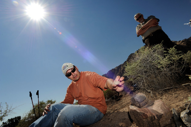 Josh Bonde, geology professor from UNLV examines a fossil that was found at Spring Mountain Ranch State Park on Saturday, Sept. 14, 2013. Bonde and several dozen students and volunteers surveyed t ...