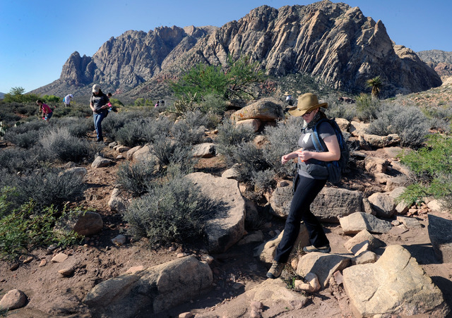 Alexandra Kosmides a geology student from UNLV surveys at Spring Mountain Ranch State Park on Saturday, Sept. 14, 2013. Kosmides and several dozen students and volunteers surveyed the undeveloped  ...