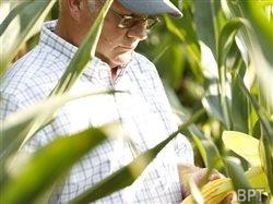 Farmers: Three planning considerations for 2014
