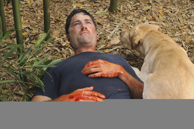 """In this publicity image released by ABC, Matthew Fox is shown in a scene from the series finale of """"Lost.""""  Revealing secret endings and plot twists has brought on wrath since the dawn o ..."""
