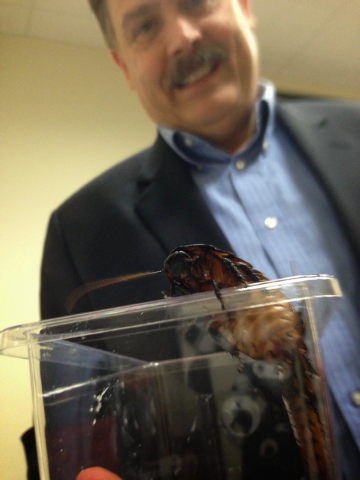Jerry Batzner, owner of Baztner Pest Management, holds a container of roaches waiting to be raced on Thursday, Oct. 10, 2013, at company's New Berlin, Wis., headquarters. The company puts on roach ...