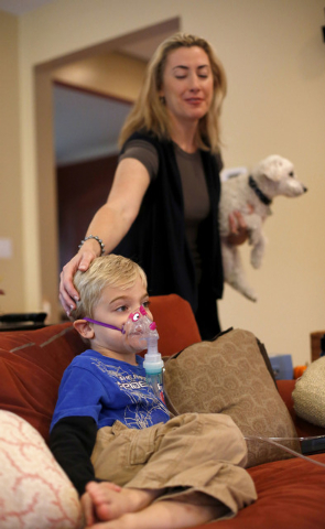 Monique Howard holds Waldo as she caresses her son Carter's head while he sits through his asthma treatment at their Northbrook, Ill., home. Hospital officials have said the shutdown could have de ...